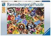 Cover of Animal Selfie 500 piece puzzle