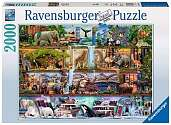 Cover of Amazing Animal Kingdom 2000pc