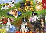 Cover of Dogs 24 Piece XXL Puzzle