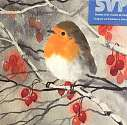 Cover of SVP Small Cello Pack of 8 Christmas Cards - Winter Robin with Berries