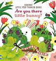 Cover of Are you there Little Bunny?