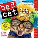 Cover of Bad Cat Page-A-Day Calendar 2020