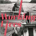 Cover of Irish Working Lives