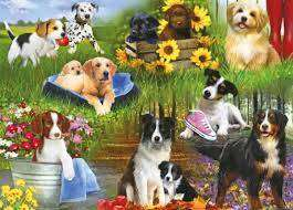 Cover of Dogs 24 Piece XXL Puzzle - 5012269022544