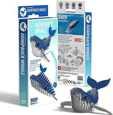 Cover of EUGY Humpback Whale - Brainstorm ltd - 5060122734202