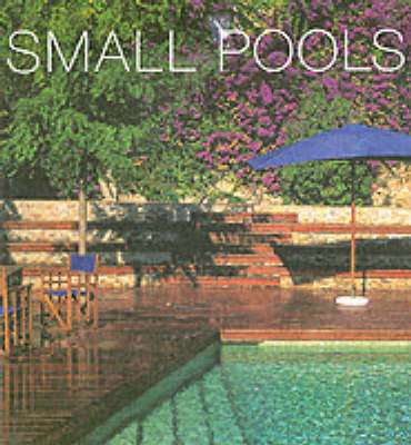Cover of SMALL POOLS - Fanny Tagavi - 9780060567583