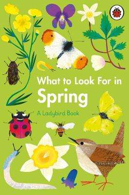 Cover of What to Look For in Spring - Elizabeth Jenner - 9780241416181