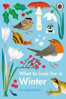 Cover of What to Look For in Winter - Elizabeth Jenner - 9780241416228