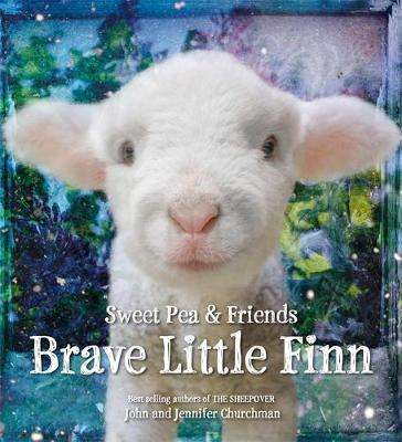 Cover of Brave Little Finn - John Churchman - 9780316273596