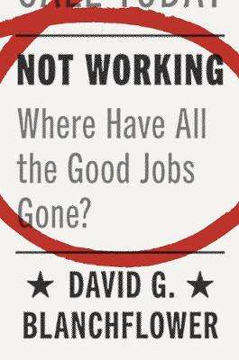 Cover of Not Working: Where Have All the Good Jobs Gone? - David G. Blanchflower - 9780691181240