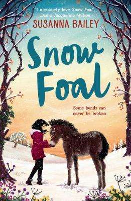 Cover of Snow Foal - the perfect Christmas book for children - Susanna Bailey - 9781405294935