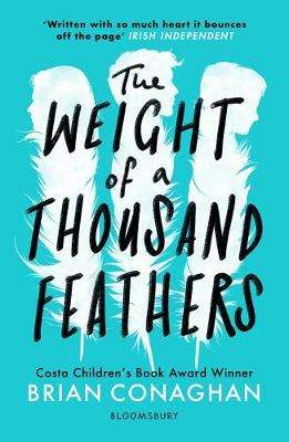 Cover of The Weight of a Thousand Feathers - Brian Conaghan - 9781408871546