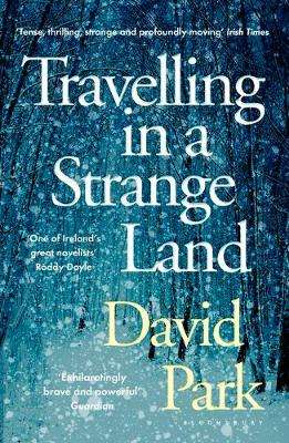 Cover of Travelling in a Strange Land - David Park - 9781408892756