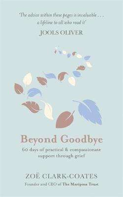 Cover of Beyond Goodbye: 60 Days of Support Through Grief - Zoe Clark-Coates - 9781409185390