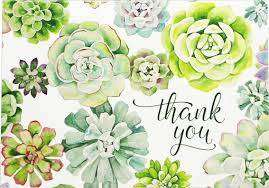 Cover of Thank You Cards Succulent Garden - Peter Pauper Press - 9781441332363