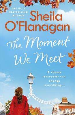 Cover of The Moment We Meet - Sheila O'Flanagan - 9781473699113