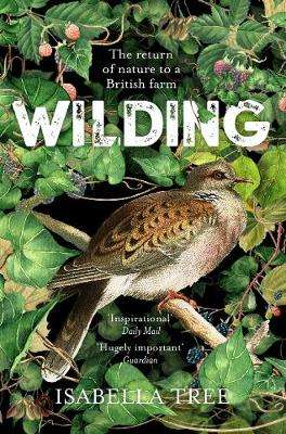 Cover of Wilding: The Return of Nature to a British Farm - Isabella Tree - 9781509805105