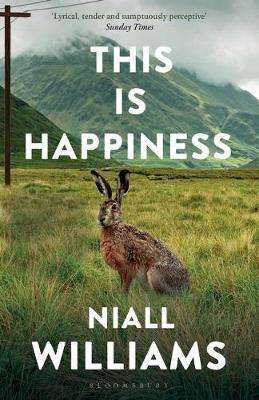 Cover of This Is Happiness - Niall Williams - 9781526609359