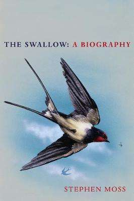 Cover of The Swallow: A Biography - Stephen Moss - 9781529110265