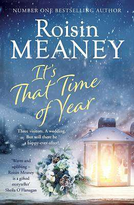 Cover of It's That Time of Year - Roisin Meaney - 9781529375183