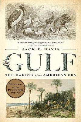 Cover of The Gulf: The Making of An American Sea - Jack E. Davis - 9781631494024