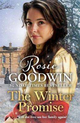 Cover of The Winter Promise - Rosie Goodwin - 9781838772215