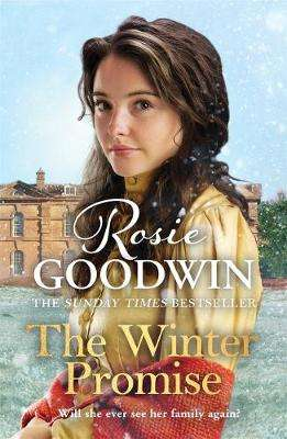 Cover of The Winter Promise - Rosie Goodwin - 9781838772994