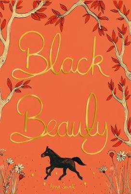 Cover of Black Beauty - Anna Sewell - 9781840227871