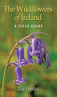 Cover of The Wildflowers of Ireland: A Field Guide - Zoe Devlin - 9781848892026