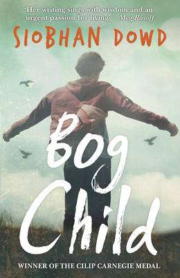 Cover of Bog Child - Siobhan Dowd - 9781909531178