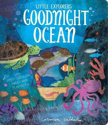 Cover of Goodnight Ocean - Becky Davies - 9781912756148